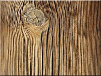 Ablakfelújítás – A fa megfelelő védelméről I.