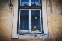 Ablakfelújítás – Gond van az ablakkal? Ne halassza a felújítást az utolsó percre