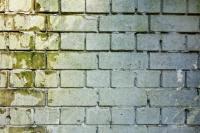 Ablakfelújítás – Meg lehet előzni nyáron a penész megjelenését?