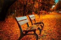 Ablakfelújítás – Néhány teendő, amit érdemes ősszel elvégezni