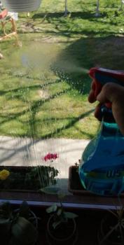 Ablakfelújítás – Hogyan lehet patyolattiszta ablaka?