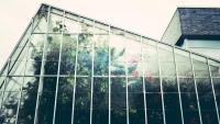 Ablakfelújítás – Milyen a jó ablaküveg?