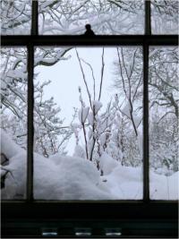 ablakfelújítás: mínusz húsz fok sem akadály